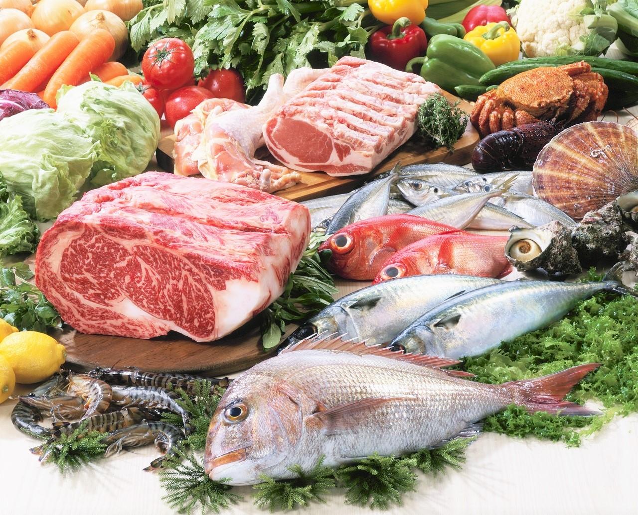 肉、野菜、魚の集合写真