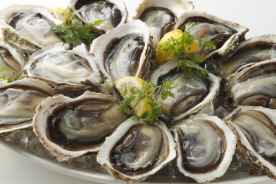 牡蠣ガラに乗った新鮮な生牡蠣のメニュー