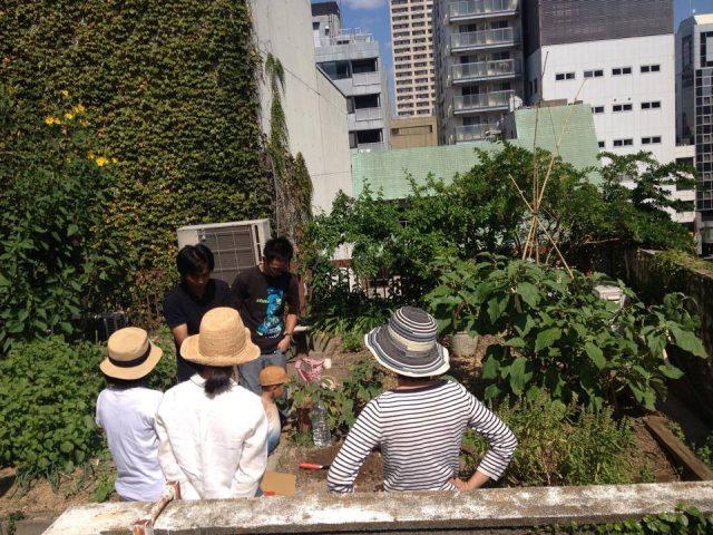 「谷町空庭」のビル屋上