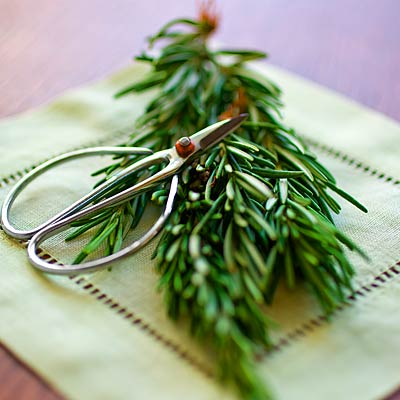 herb-rosemary-400x400