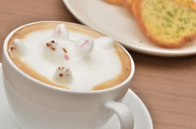 latte05