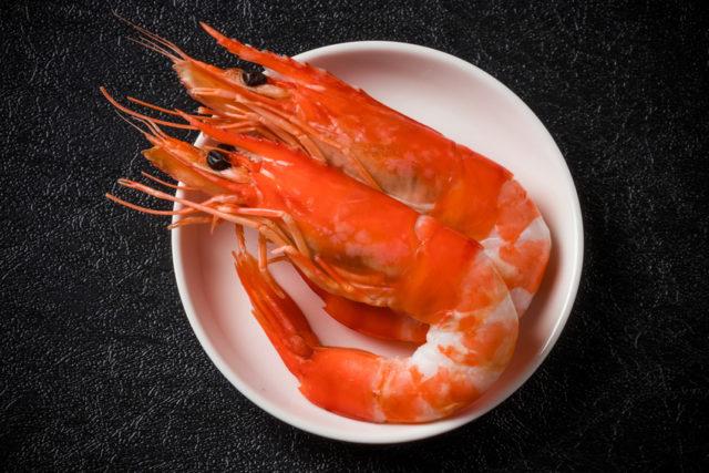 白い小皿に真っ赤な友党海老が二匹盛り付けられている写真