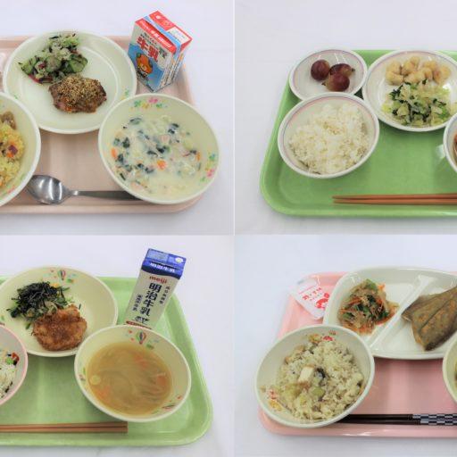 4種類の給食を集めた写真