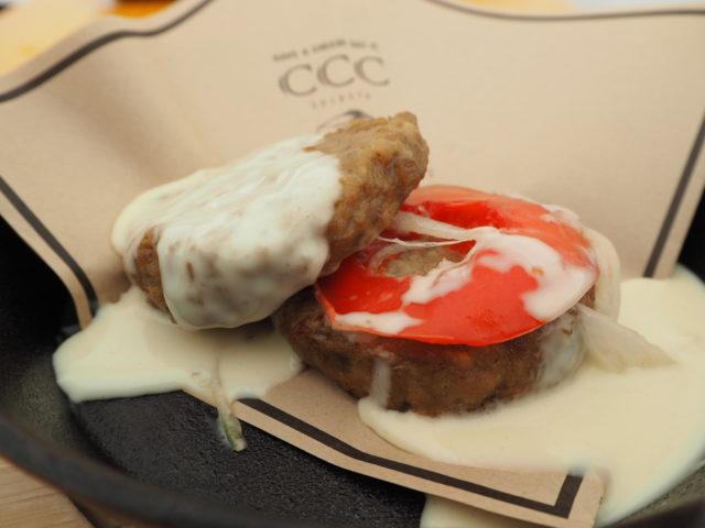 チーズにまみれた肉バーガーの写真
