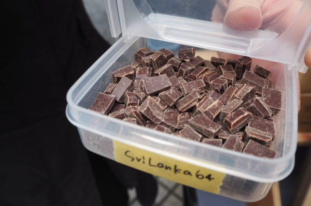 試食のチョコレートの写真