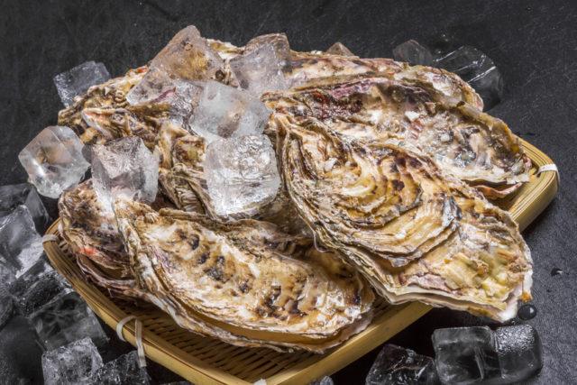 殻付き牡蠣の画像