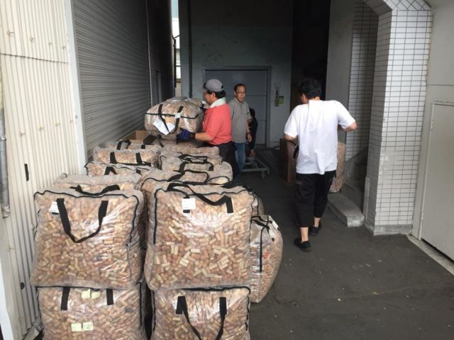 大量のコルク栓が袋に入って回収される様子