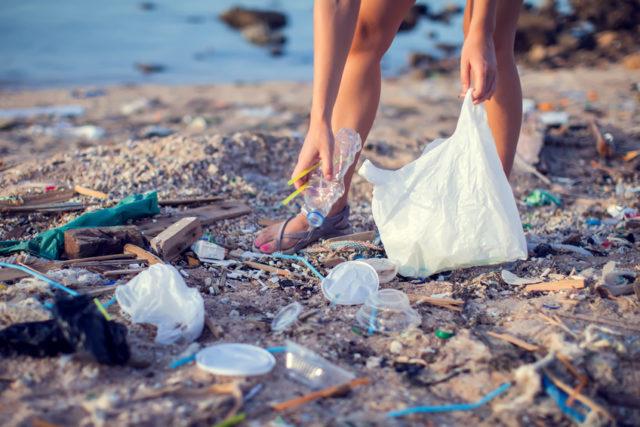 海辺のプラスチックごみを拾う画像
