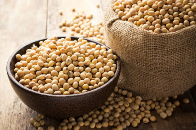 ボウルに入った大豆の画像