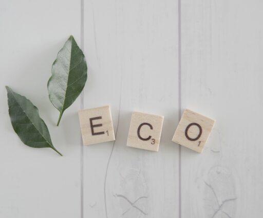 イメージ:白い木のテーブルの上に置かれた緑の葉っぱと、木のブロックに書かれた「eco」の文字